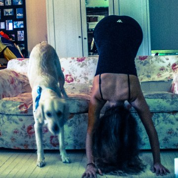 Downward Dogue